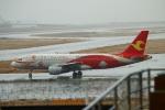 reonさんが、関西国際空港で撮影した天津航空 A320-214の航空フォト(写真)