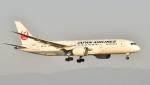 Take51さんが、関西国際空港で撮影した日本航空 787-846の航空フォト(写真)