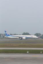 安芸あすかさんが、ノイバイ国際空港で撮影した全日空 787-9の航空フォト(写真)