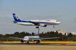 ポン太さんが、成田国際空港で撮影した全日空 A320-211の航空フォト(写真)