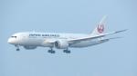 誘喜さんが、関西国際空港で撮影した日本航空 787-846の航空フォト(写真)