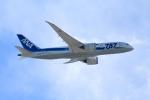 anyongさんが、羽田空港で撮影した全日空 787-881の航空フォト(写真)