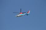 ジャンクさんが、東京ヘリポートで撮影した川崎市消防航空隊 AS365N3 Dauphin 2の航空フォト(写真)