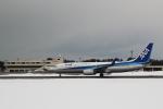 くろネコさんが、庄内空港で撮影した全日空 737-881の航空フォト(写真)