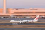 岡崎美合さんが、羽田空港で撮影した日本航空 767-346/ERの航空フォト(写真)