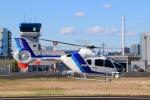 Miyabi24さんが、東京ヘリポートで撮影したオールニッポンヘリコプター EC135T2の航空フォト(写真)