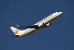 ケロさんが、羽田空港で撮影した日本航空 737-846の航空フォト(写真)