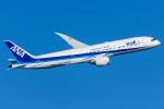 Tomo-Papaさんが、羽田空港で撮影した全日空 787-9の航空フォト(写真)