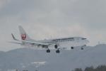endress voyageさんが、岡山空港で撮影した日本航空 737-846の航空フォト(写真)