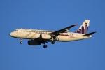 たっくさんが、成田国際空港で撮影した香港エクスプレス A320-232の航空フォト(写真)
