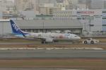 DML30さんが、福岡空港で撮影した全日空 737-881の航空フォト(写真)
