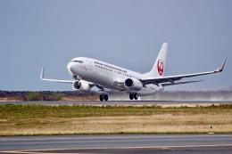 JRF spotterさんが、ホノルル国際空港で撮影した日本トランスオーシャン航空 737-8Q3の航空フォト(写真)
