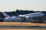 Wasawasa-isaoさんが、成田国際空港で撮影した日本航空 787-846の航空フォト(写真)