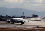 rakuei1213さんが、伊丹空港で撮影した日本航空の航空フォト(写真)
