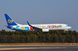 さくらの城南山。さんが、成田国際空港で撮影したマンダリン航空 737-8SHの航空フォト(写真)