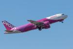 Y-Kenzoさんが、成田国際空港で撮影したピーチ A320-214の航空フォト(写真)
