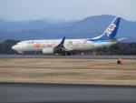 富士のこまきさんが、静岡空港で撮影した全日空 737-881の航空フォト(写真)