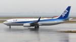 誘喜さんが、関西国際空港で撮影した全日空 737-881の航空フォト(写真)