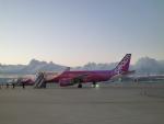 furaibo123さんが、関西国際空港で撮影したピーチ A320-214の航空フォト(写真)
