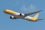 Y-Kenzoさんが、成田国際空港で撮影したスクート 787-9の航空フォト(写真)