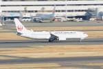 daisuke1228さんが、羽田空港で撮影した日本航空 737-846の航空フォト(写真)