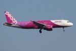 じゃがさんが、成田国際空港で撮影したピーチ A320-214の航空フォト(写真)