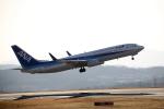 北の小人さんが、岡山空港で撮影した全日空 737-881の航空フォト(写真)