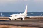 岡崎美合さんが、大分空港で撮影した日本航空 737-846の航空フォト(写真)