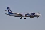 妄想竹さんが、羽田空港で撮影した全日空 787-881の航空フォト(写真)