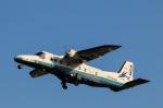 takaRJNSさんが、調布飛行場で撮影した新中央航空 228-212の航空フォト(写真)
