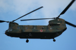 takaRJNSさんが、木更津飛行場で撮影した陸上自衛隊 CH-47Jの航空フォト(写真)
