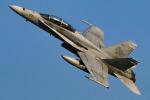 sunagimoさんが、厚木飛行場で撮影したアメリカ海兵隊 F/A-18D Hornetの航空フォト(写真)
