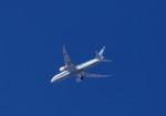 C6N1さんが、羽田空港で撮影した全日空 787-9の航空フォト(写真)