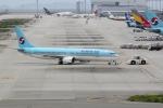 職業旅人さんが、関西国際空港で撮影した大韓航空 737-9B5の航空フォト(写真)