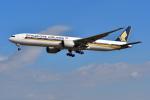 はるかのパパさんが、成田国際空港で撮影したシンガポール航空 777-312/ERの航空フォト(写真)