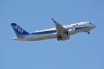 シュウさんが、成田国際空港で撮影した全日空 A320-271Nの航空フォト(写真)