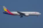 PASSENGERさんが、香港国際空港で撮影したアシアナ航空 777-28E/ERの航空フォト(写真)