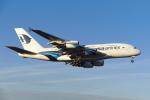 よしぱるさんが、ロンドン・ヒースロー空港で撮影したマレーシア航空 A380-841の航空フォト(写真)