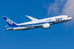 Tomo-Papaさんが、羽田空港で撮影した全日空 787-881の航空フォト(写真)