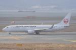 神宮寺ももさんが、関西国際空港で撮影した日本航空 737-846の航空フォト(写真)