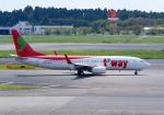 Dreamer-K'さんが、成田国際空港で撮影したティーウェイ航空 737-8Q8の航空フォト(写真)