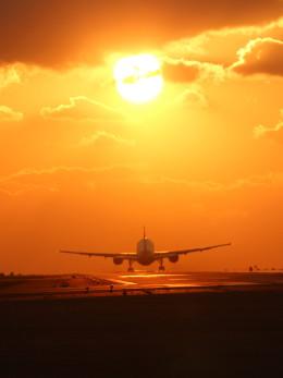 プッチさんが、熊本空港で撮影した全日空 777-281の航空フォト(写真)