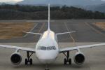 7915さんが、石見空港で撮影した全日空 A320-211の航空フォト(写真)