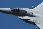 isiさんが、岐阜基地で撮影した航空自衛隊 F-15J Eagleの航空フォト(写真)