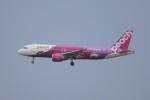 頼嗣さんが、関西国際空港で撮影したピーチ A320-214の航空フォト(写真)