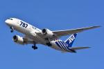 リーペアさんが、羽田空港で撮影した全日空 787-881の航空フォト(写真)