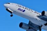 Dojalanaさんが、函館空港で撮影した全日空 777-281の航空フォト(写真)