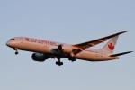 camelliaさんが、成田国際空港で撮影したエア・カナダ 787-9の航空フォト(写真)