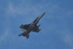 NFファンさんが、厚木飛行場で撮影したアメリカ海軍 EA-18G Growlerの航空フォト(写真)