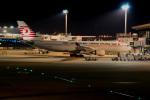 ゴンベイさんが、成田国際空港で撮影したターキッシュ・エアラインズ A330-203の航空フォト(写真)